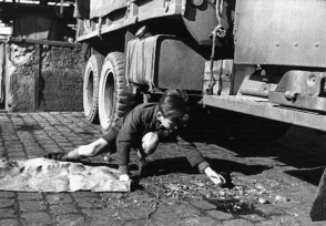 066-post-war-era-remaining-Germany-child-collecting-coal-pieces-under-Lorry