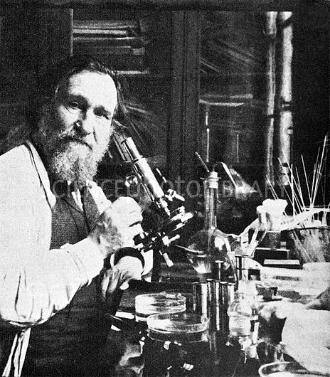 Elie Metchnikoff (1845-1916), Russian biologist and Nobel laureate. Metchnikoff, also known as Ilya Ilyich Mechnikov, is best known for his pioneering research into the immune system, for which he won the Nobel Prize in Physiology or Medicine in 1908. He discovered phagocytosis while working at a private laboratory in Messina, Sicily. This is the process of cells engulfing large particles (such as bacteria or dead cells), and one of the ways that the white blood cells of the immune system fight disease. Image from 'La Conquete Du Monde Invisible' by Giuseppe Penso.
