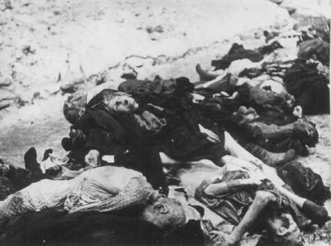 Victims of German SS and Hungarian Arrow Cross terror in the ghetto